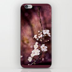 Purple Spring iPhone & iPod Skin