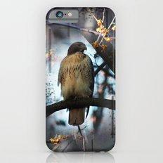 A Hawks Dream Slim Case iPhone 6s