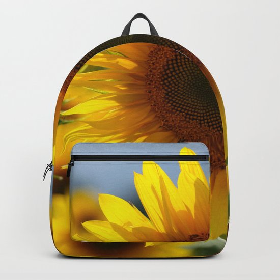 In the sun Backpack