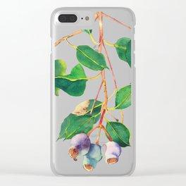 Australian Gumnuts Watecolour Clear iPhone Case