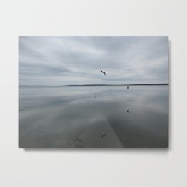 Reflections of Birds on a Lake Metal Print