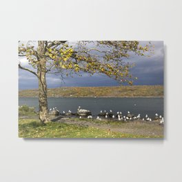 Autumn Day in the Finger Lakes II Metal Print