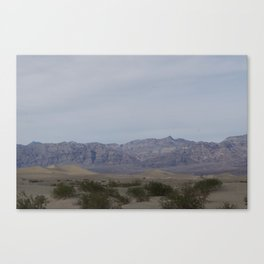 Death Valley Spring 2016 Bloom Two: Greenery  Canvas Print