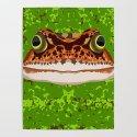 Frog Pond by nicolewilson