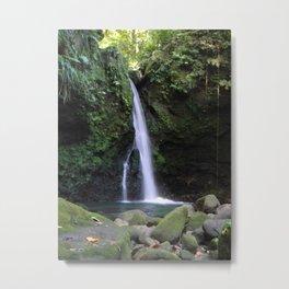 Hibiscus Falls Metal Print