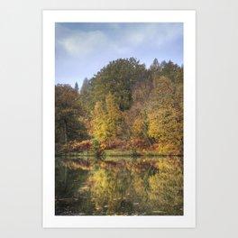 Autumn at Cannop Art Print