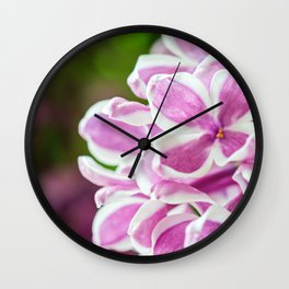 Macro shot of beautiful lilac flower on blurred background. Shallow depth of field. Wall Clock