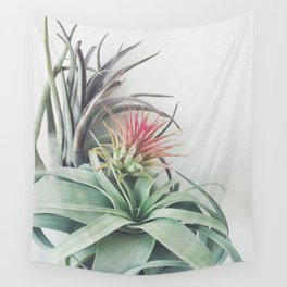 Air Plant Collection II Wall Tapestry
