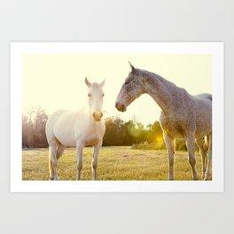Two Horses Fine Art Photography Art Print