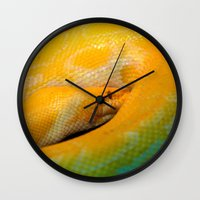 monty python Wall Clocks featuring Albino Python by GardenGnomePhotography