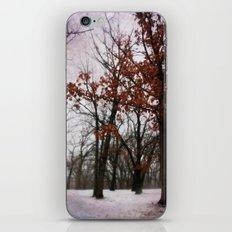 Winter Mood iPhone & iPod Skin