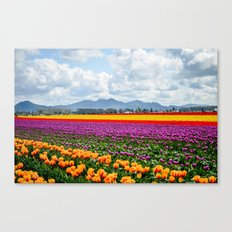 Bright Fields and Mountains Canvas Print