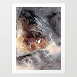 Citrine & Feathers Art Print