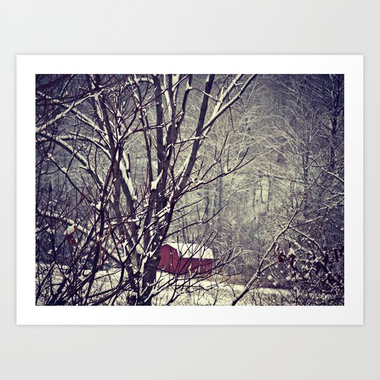 Out Behind The Barn  Art Print