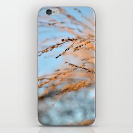 golden leaves against a blue sky. iPhone Skin
