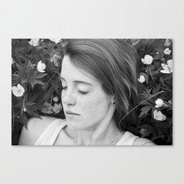 Dulcet 2 Canvas Print