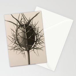 Karl Blossfeldt - Nigella Damascena Spinnenkopf Stationery Cards