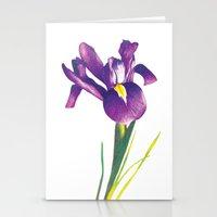 iris Stationery Cards featuring Iris by Matt McVeigh