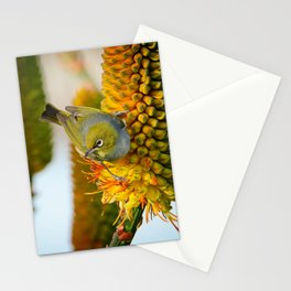 Silvereye Launch Stationery Cards