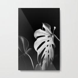 Monstera in Winter #1 Metal Print