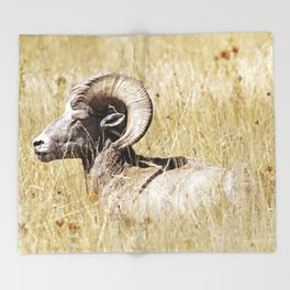Rocky Mountain Bighorn Throw Blanket