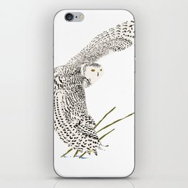 The Ungava Collection: The Snowy Owl iPhone Skin