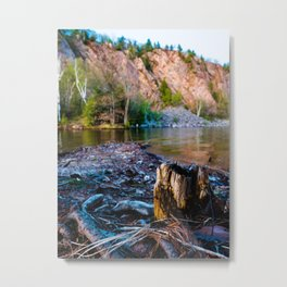 Tree Stump at Bon Echo Metal Print