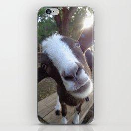 Goat Barnyard Farm Animal iPhone Skin