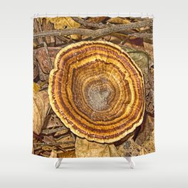 Bracket Fungi on the forest floor Shower Curtain
