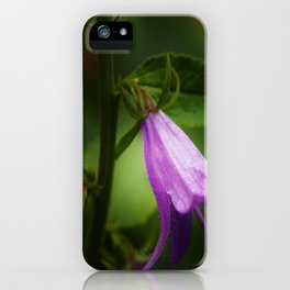 Doing it Right iPhone Case