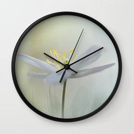 Irresistible Wood Anemone.... Wall Clock