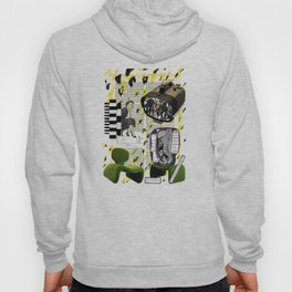 Why is everybody else all modded out but not me? Hoody