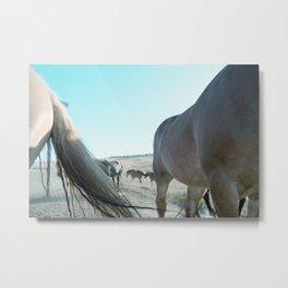 Horsepower Metal Print