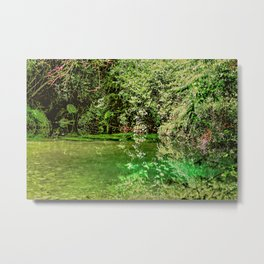 Orara River 2 Metal Print
