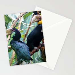 Pair Of Wreathed Hornbills Stationery Cards