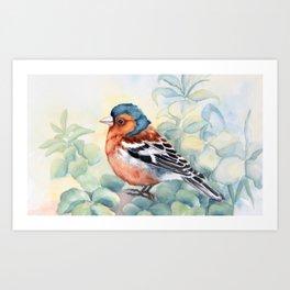 garden and chaffinch Art Print