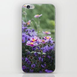 Asters and Japanese Anemones iPhone Skin