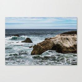 Elephant Rock Canvas Print