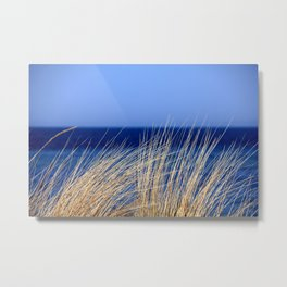 Dried long grass with blue sea behind and blue sky Metal Print