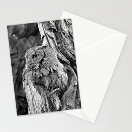 Stoic in camo Stationery Cards
