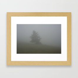 A Tree in the Fog Framed Art Print