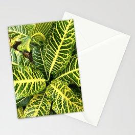 Verde Planta llena de amor Stationery Cards