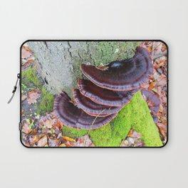 Ganoderma applanatum Laptop Sleeve