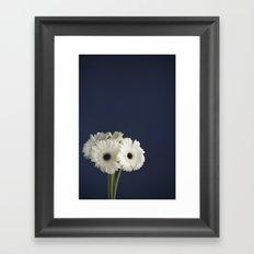 Gerbera Daisies Framed Art Print