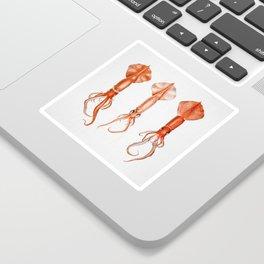 Squids - Watercolor Sticker