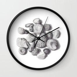 Fossils Wall Clock