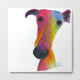 Nosey Dog Whippet Greyhound ' PUMPKIN ' by Shirley MacArthur Metal Print
