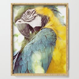Magical Parrot - Guacamaya Variopinta - Magical Realism Serving Tray