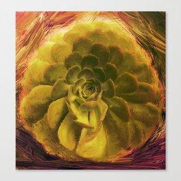 Dusucculent Canvas Print