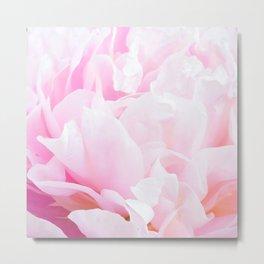 CREAMY PINK FLOWER Metal Print